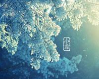 小雪.jpg