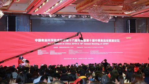 中国食品科学技术学会第十六届年会在武汉举行