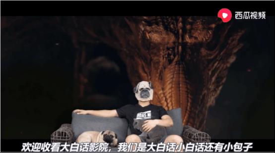 西瓜视频创作人:大白话本人露脸居然没掉粉?