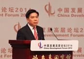 国家发展和改革委员会副主任徐宪平.jpg