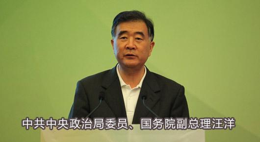 中共中央政治局委员、国务院副总理汪洋.jpg