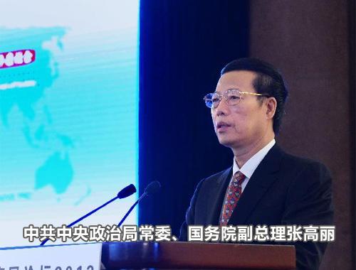 中共中央政治局常委、国务院副总理张高丽