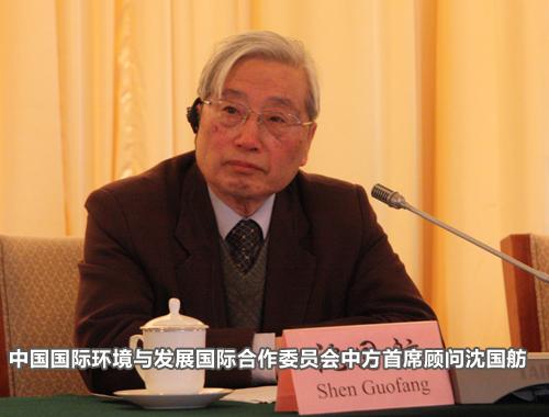 中国国际环境与发展国际合作委员会中方首席顾问、<br>中国工程院前副院长沈国舫