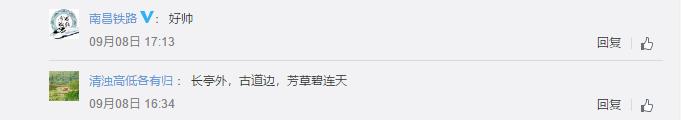 981620中经网评论.png