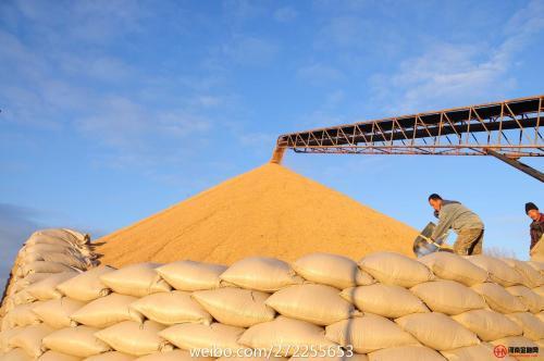 中国粮食年产量比70年前增加1万多亿斤