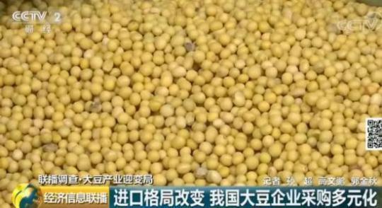 进口格局已变!中国大豆