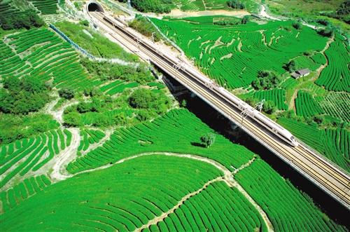 """南平提出""""水美城市""""建设新理念,通过发挥绿色生态优势,加快打造"""