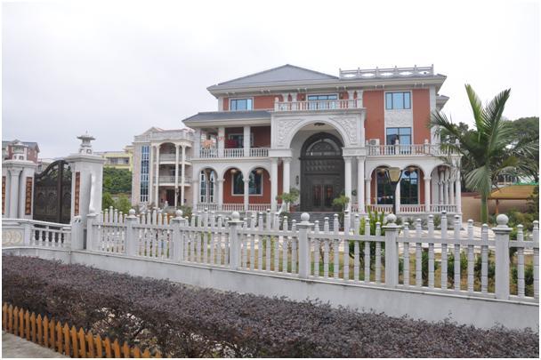兴化农村别墅外观图