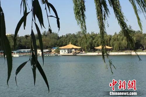 今年4月,北京陶然亭公园内春意盎然。<a target='_blank' href='http://www.chinanews.com/' _fcksavedurl='http://www.chinanews.com/' ></table>中新网</a> 种卿 摄