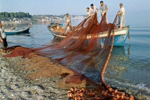 希腊渔民在作业。图片来源:联合国网站。