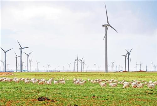 风驰伴电掣 产业入云端——内蒙古培育战略性新兴产业