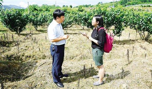 """[砥砺奋进的5年]""""美丽中国""""背后的故事:贫困县和百强县的新气象"""