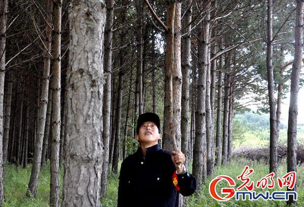 【京津冀绿色发展看河北】短视频 | 塞罕坝一线护林员:每天10小时巡查万亩林场