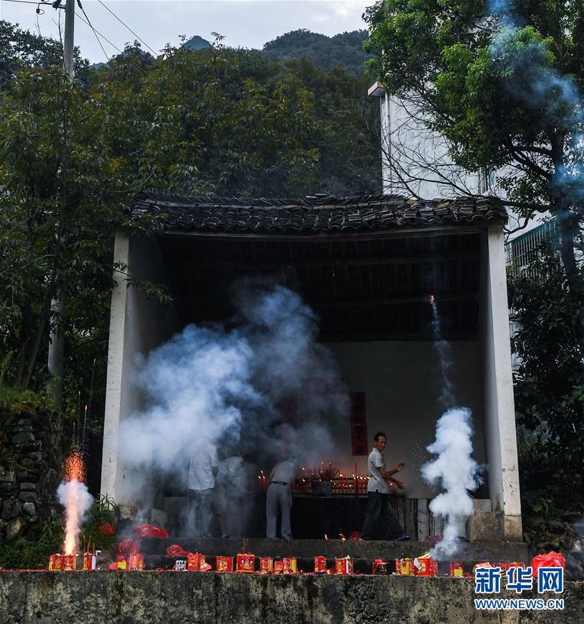 """(美丽中国)(1)""""白露""""开竿 山核桃产区开启丰收季"""