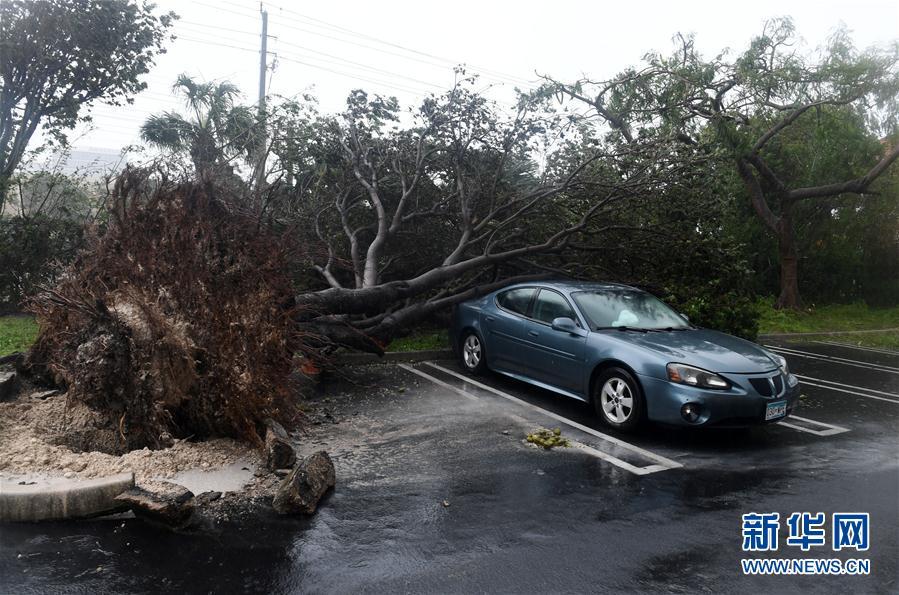 """(国际)(1)飓风""""艾尔玛""""登陆美国佛罗里达"""