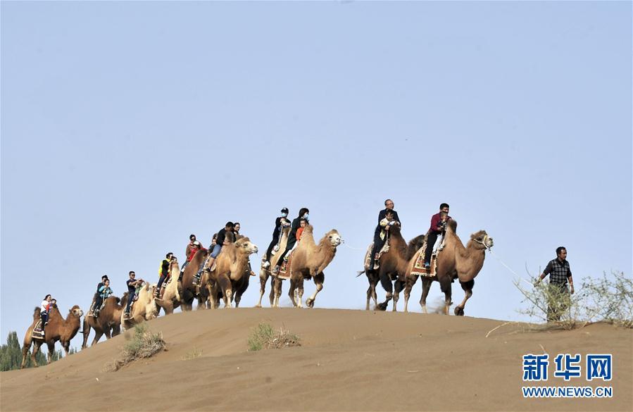 (图文互动)(1)漫漫黄沙变宝地——新疆打造多元沙漠产业