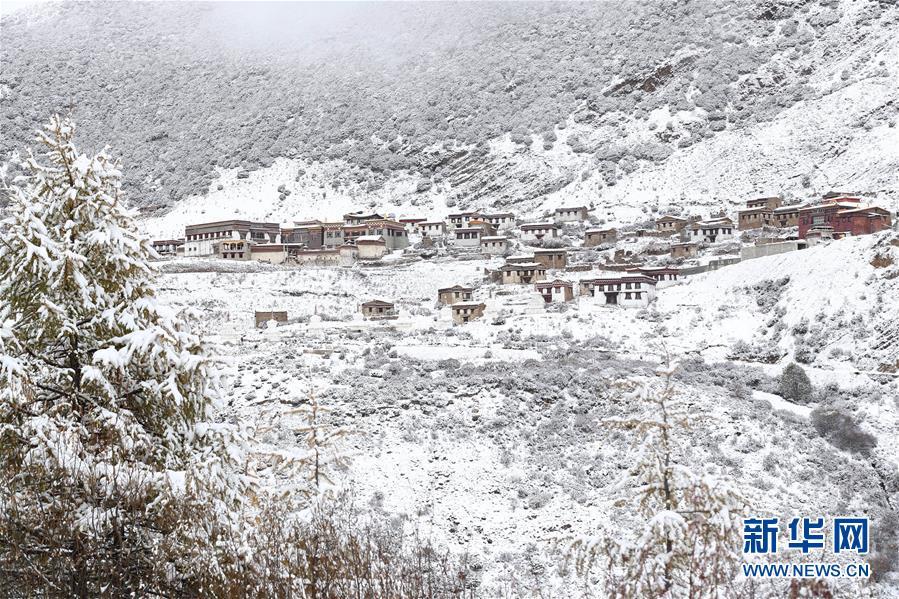 (美丽中国)(4)初冬的稻城