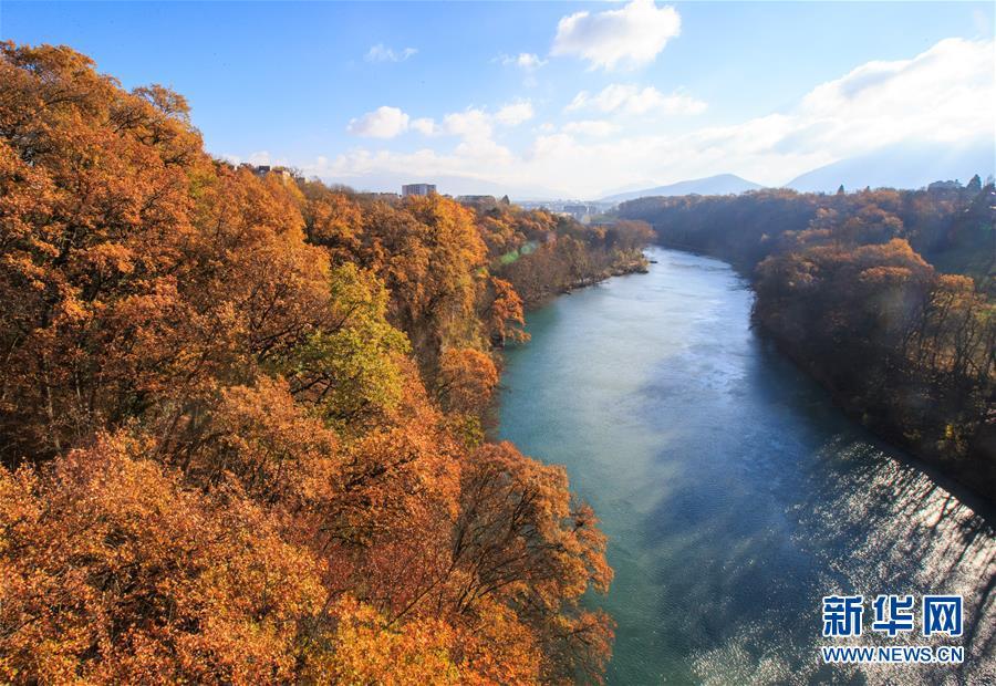 (国际)(1)罗纳河谷深秋