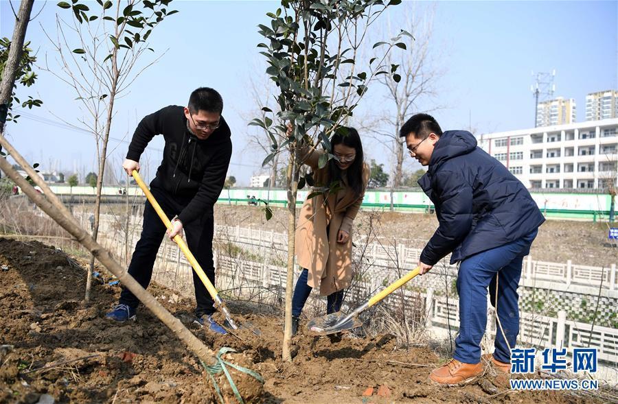 新疆时时彩开奖号码:美化家园_播种绿色