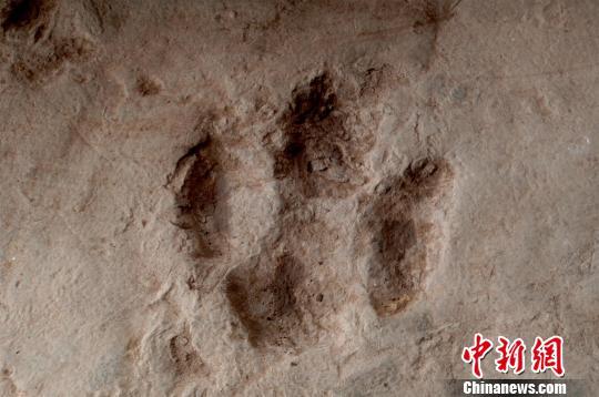 图为重庆綦江国家地质公园内的凹形足迹。重庆綦江区委宣传部供图