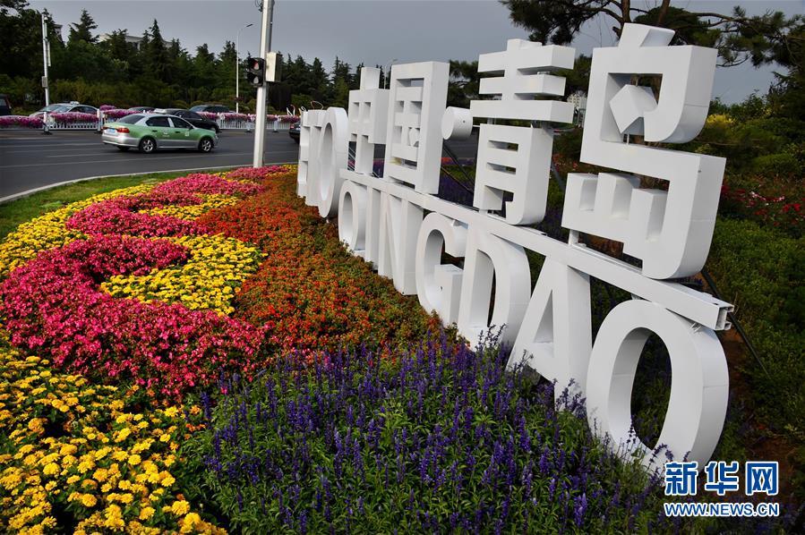 青岛以崭新面貌迎接上合组织峰会 创新之城充盈盎然生机