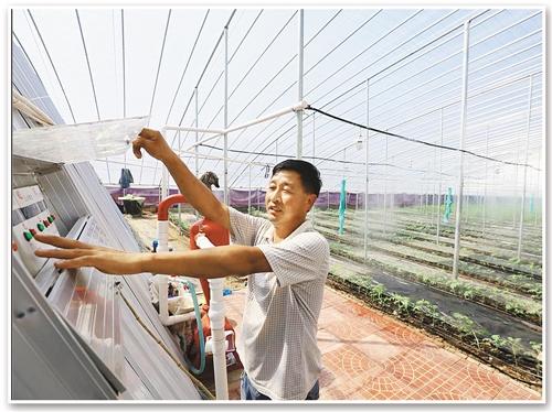 在寿光市稻田镇崔岭西村,村民崔江元在大棚里操作水肥一体化设备。 (资料图片)