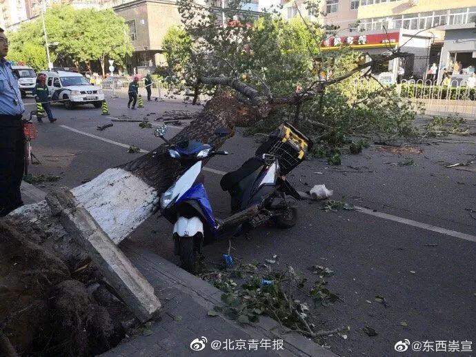 北京强风来袭:4人身亡,航班下降时遭遇强烈气流乘客惊叫