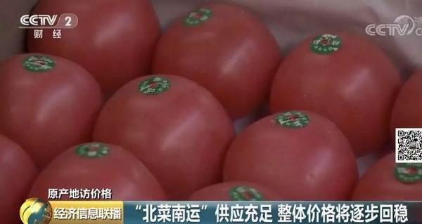 """记者探访""""蔬菜之乡"""":9月菜价,能不能稳住?"""