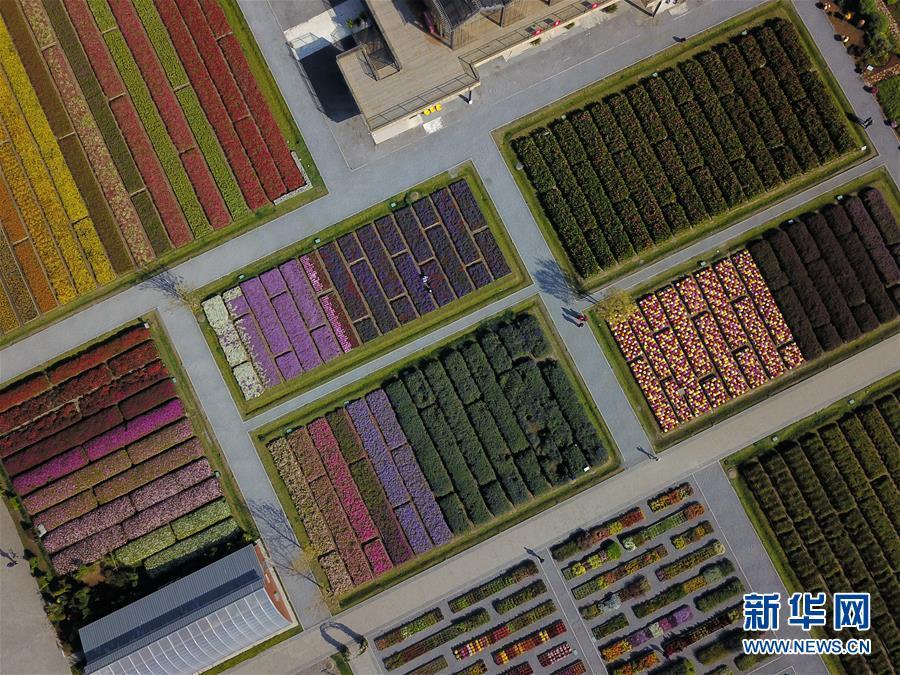 """(新华全媒头条・图文互动)(11)难忘的""""世园记忆"""" 共同的绿色追求――写在北京世园会闭幕之际"""