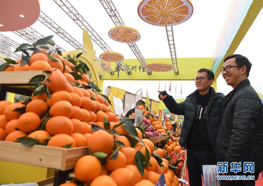 重庆奉节国际橙博会开幕