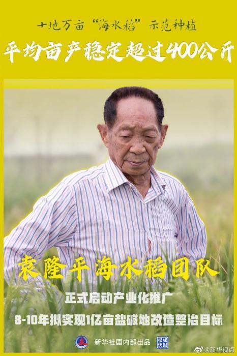 """10万亩""""海水稻""""示范种植平均亩产稳定超过400公斤"""