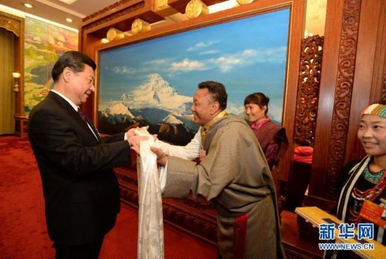 (XHDW)(1)习近平参加西藏代表团审议