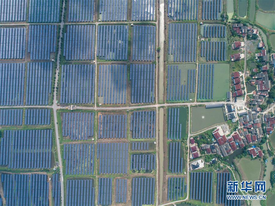 """(经济)(1)浙江湖州:千亩鱼塘变身""""绿色发电站"""""""