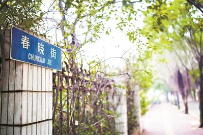"""广东开始清理 """"大、洋、怪、重""""等不"""