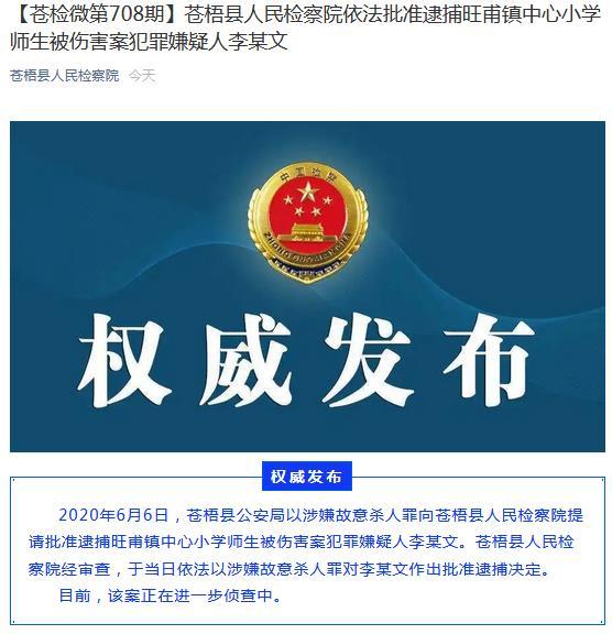 广西苍梧县旺甫镇中心小学师生被伤害案嫌疑人被批捕