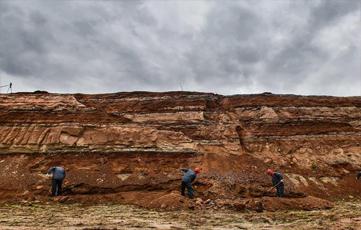 吉林延吉一工地施工意外发现白垩纪恐龙化石群