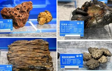 自然资源部公布我国首批深海样品和资料信息