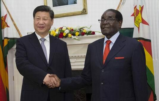 习近平同津巴布韦总统穆加贝举行会谈