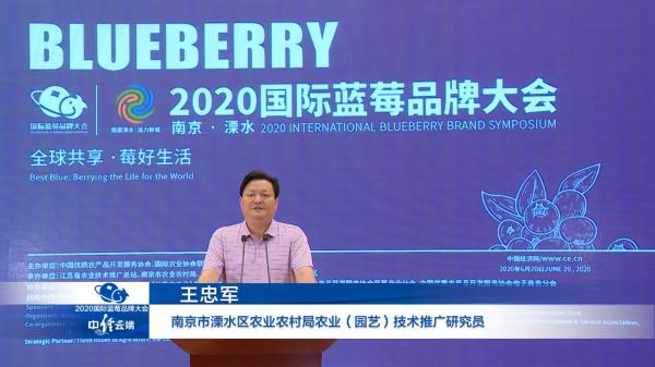 """王忠军:溧水蓝莓产业发展""""天时、地利、人和"""""""