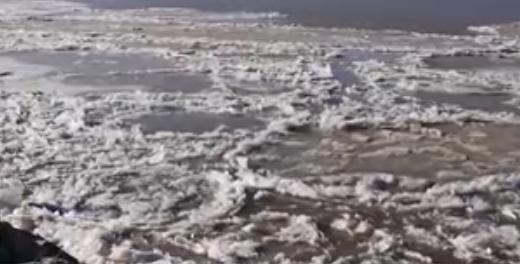 黃河已封河701公里 下游也將出現封河