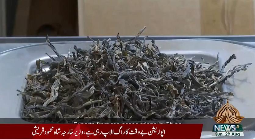 中国茶产业发展经验为巴基斯坦带来新思路