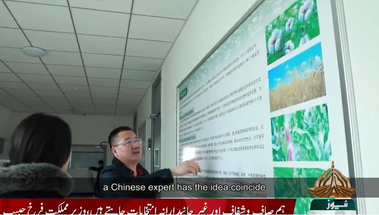 巴学者:中国技术可帮助提高巴基斯坦棉花质量