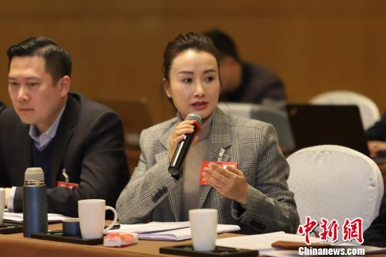 来自香港的贵州省政协委员李进秋在发言。 瞿宏伦 摄