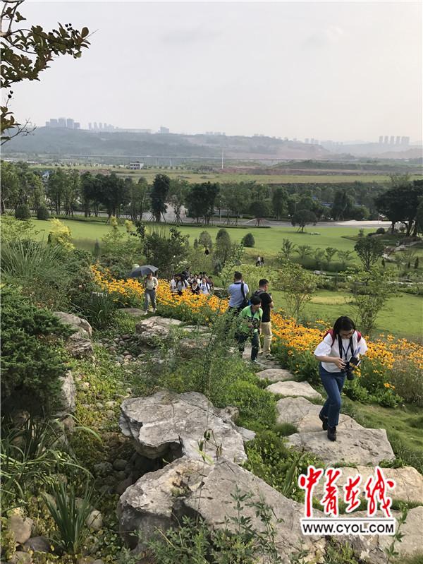 【共舞长江经济带】重庆:利用高度搞创新 巧用重力做环保