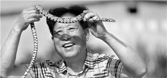 """探秘""""中国第一蛇村"""":有村民一天被咬上"""