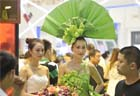 Cartoons and costumes at Chongqing home fair