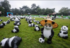 Panda figures displayed near West Lake in Hangzhou