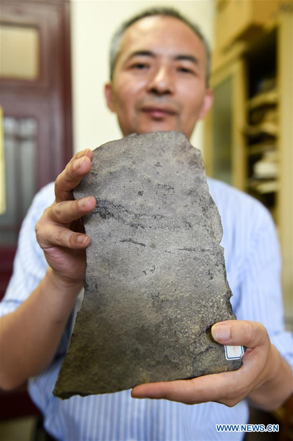 CHINA-NANJING-EARLIEST ANIMAL FOOTPRINTS (CN)