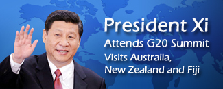 Xi Attends G20 Summit