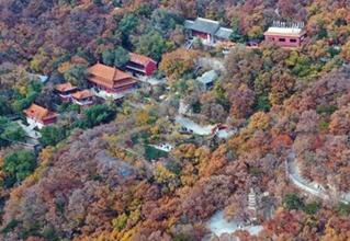 Autumn scenery of Panshan Mountain scenic resort in north China
